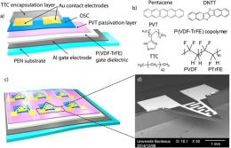 Piezoelectric polymer gated OFET: Cutting-edge electro-mechanical transducer for organic MEMS-based sensors