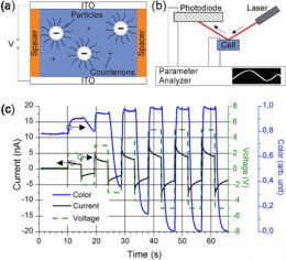 A ferroelectric polymer introduces addressability in electrophoreticdisplay cells